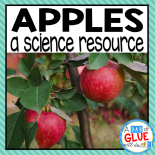 Engage your class in an exciting hands-on experience learning about apples! This unit is perfect for science centers in Kindergarten, First Grade, and Second Grade classrooms and packed full of inviting science activities.  Students will learn about apple life cycles, label apples, complete an apple taste test, and much more! This unit is great for homeschoolers, kids craft activities, and to add to your Fall unit studies!