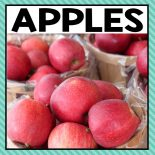 There are so many different apple activities that you can do at home or in the classroom. This page allows you to quickly see our favorite apple ideas, activities and printables that have been featured on A Dab of Glue Will Do.