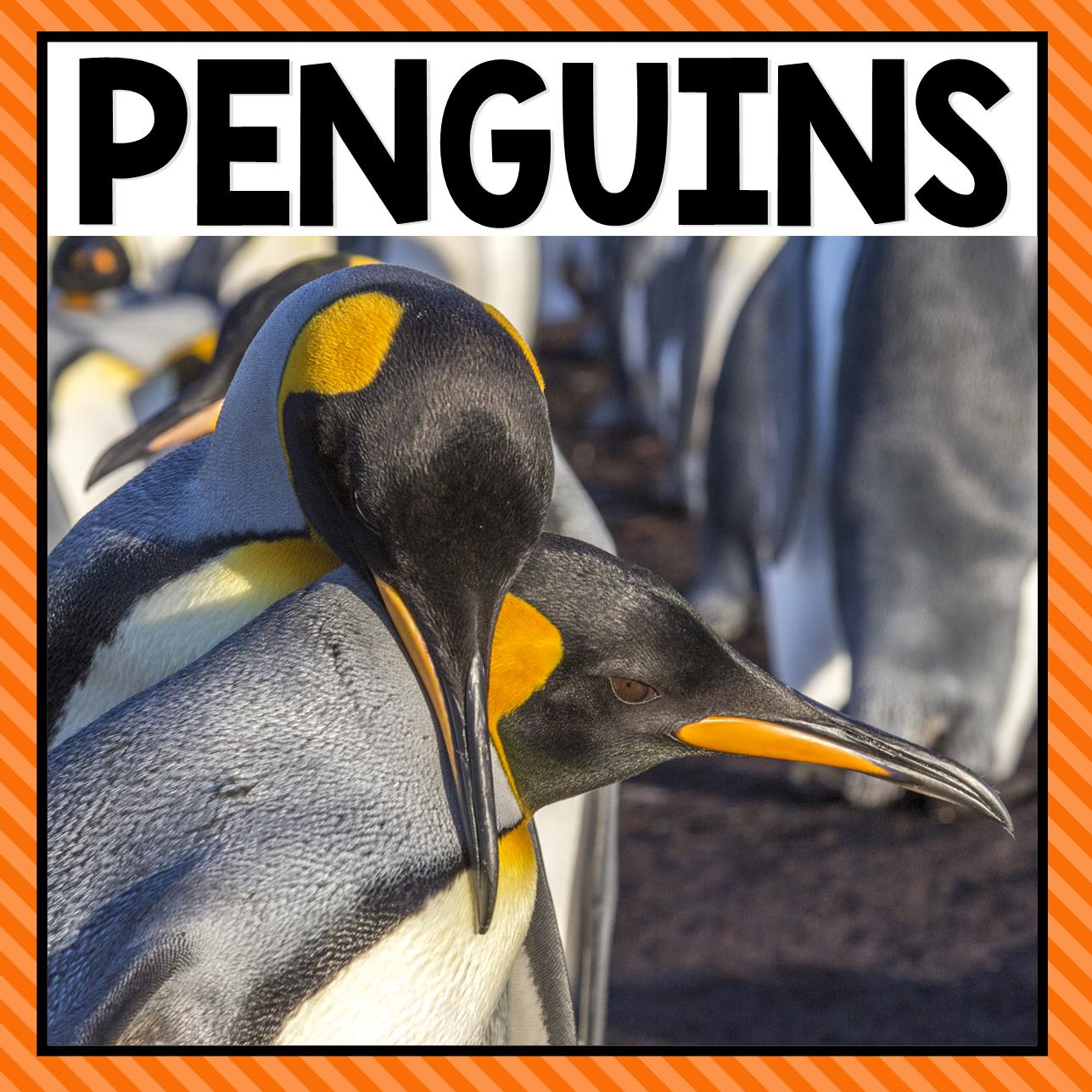There are so many different penguin activities that you can do at home or in the classroom. This page allows you to quickly see our favorite penguin ideas, activities and printables that have been featured on A Dab of Glue Will Do.