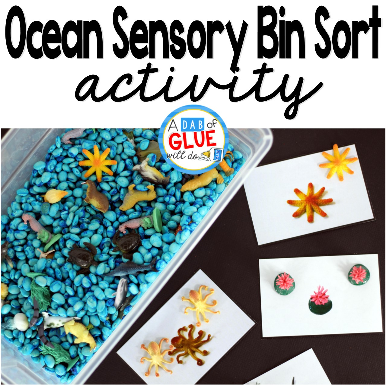 Ocean Sensory Bin Sorting Activity