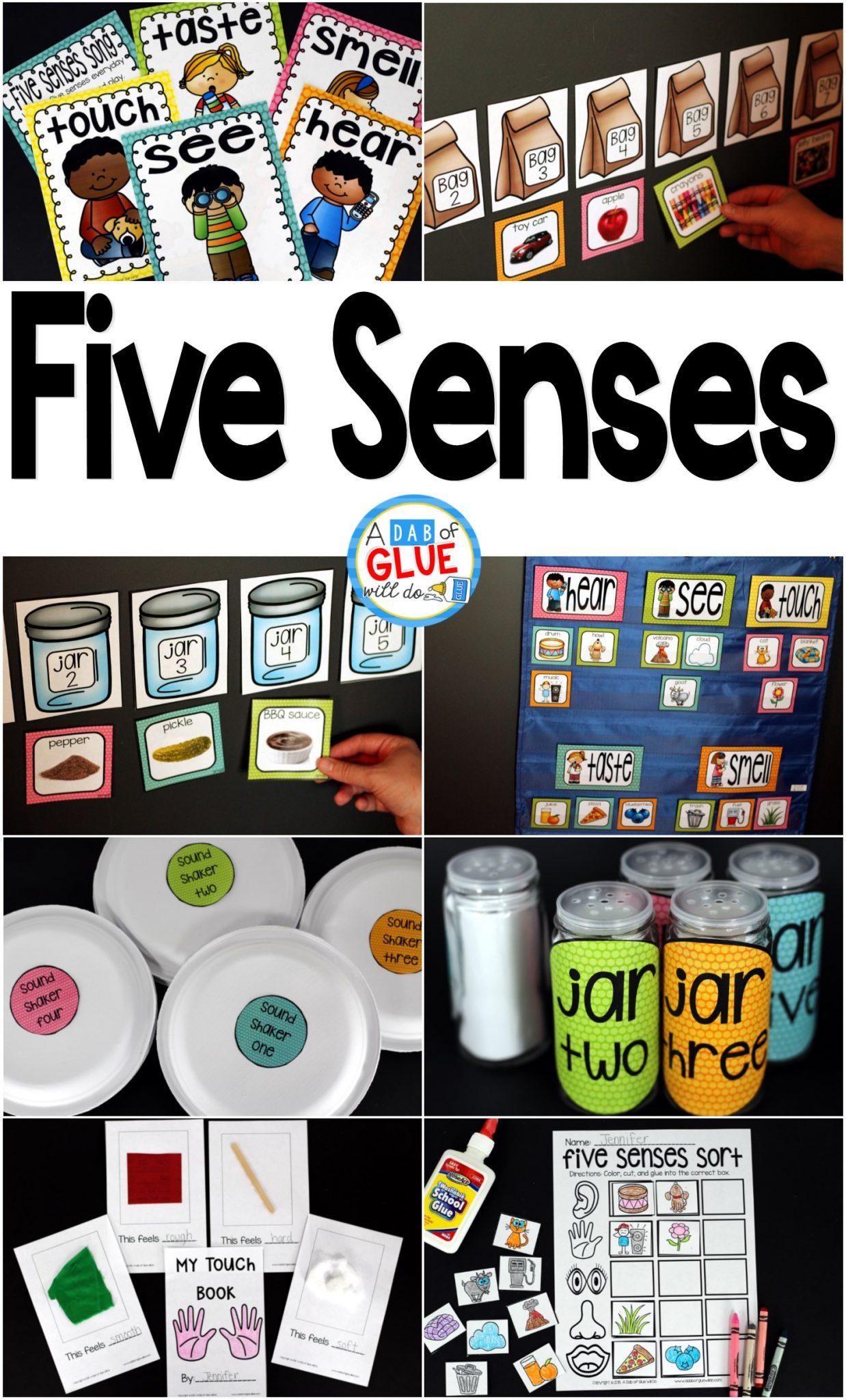 five senses a dab of glue will do
