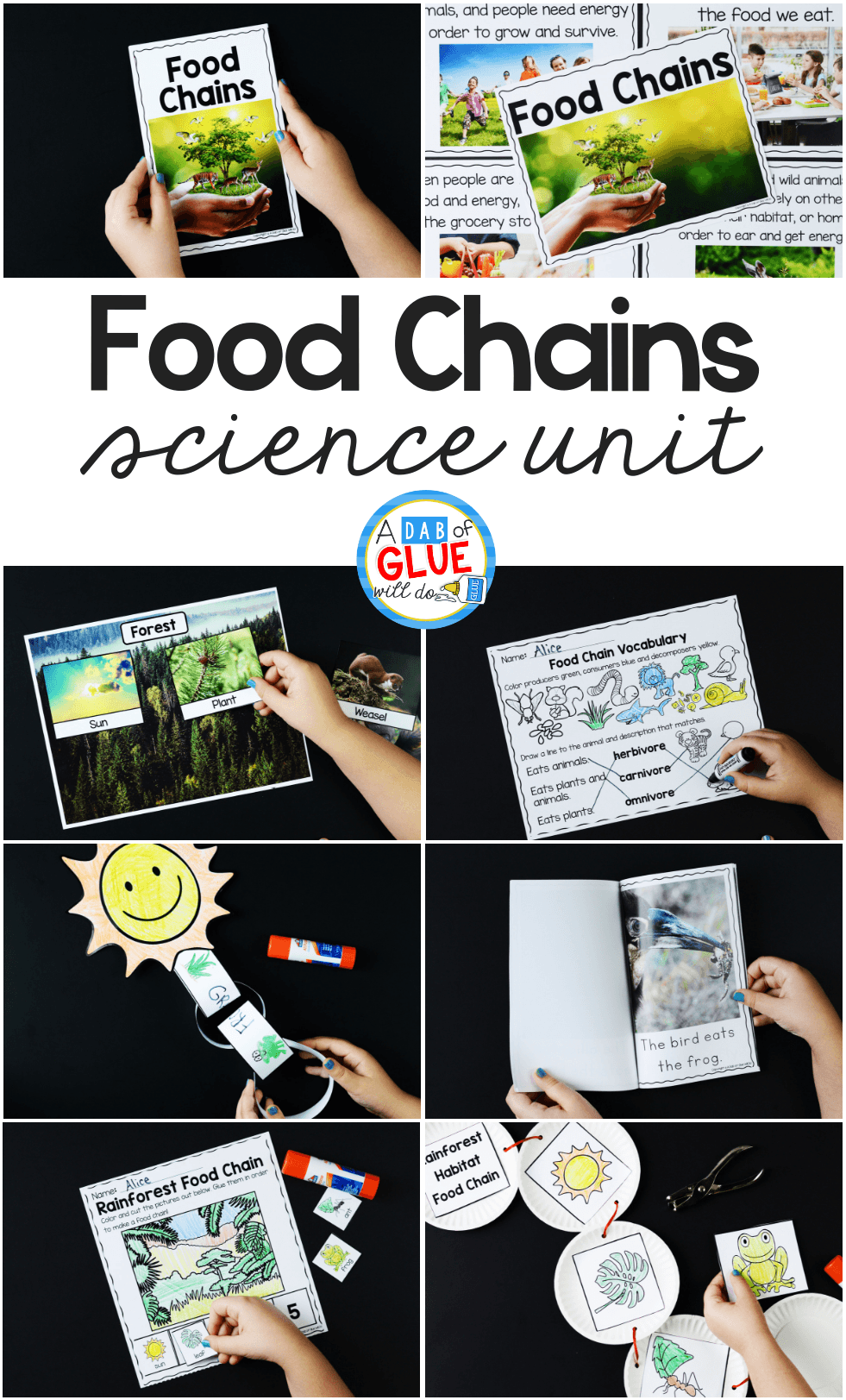 Students will love finding out about food chains from 7 different habitats with real pictures, worksheets, manipulatives and a craftivity.