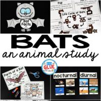 Engage your class in an exciting hands-on experience learning all about bats! Perfect for science in Preschool, Pre-K, Kindergarten, First Grade, and Second Grade classrooms and packed full of inviting science activities.  Students will learn about the difference between bats and birds, nocurtnal and dirunal animals, parts of a bat, and a bat's life cycle. When students are done they can complete a bat research project. This pack is great for homeschoolers, kids craft activities, and to add to your unit studies!