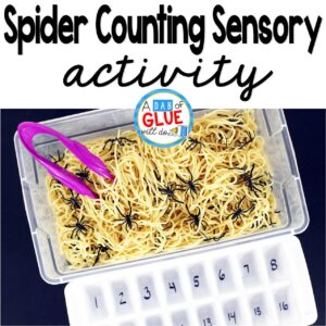 Spider Counting Sensory Activity