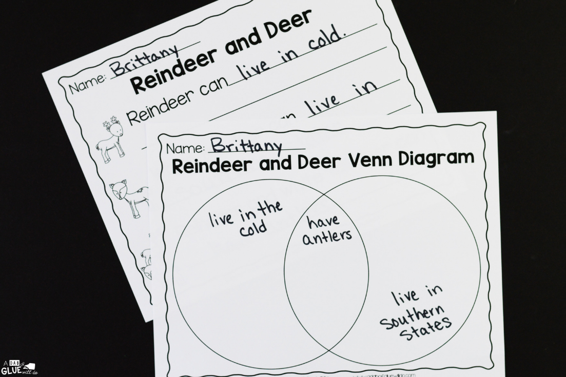 Reindeer Facts an animal study 5 Horizontal Photos reindeer facts an animal study a dab of glue will do