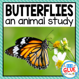 Engage your class in an exciting hands-on experience learning all about butterflies! This Butterfly Animal Study is perfect for science in Preschool, Pre-K, Kindergarten, First Grade, and Second Grade classrooms and packed full of inviting science activities.  Students will learn about the difference between butterflies and moths, animal coverings (fur, feathers, and scales), parts of a butterfly, and a butterfly's life cycle. When students are done they can complete a butterfly research project. This pack is great for homeschoolers, kids craft activities, and to add to your unit studies!