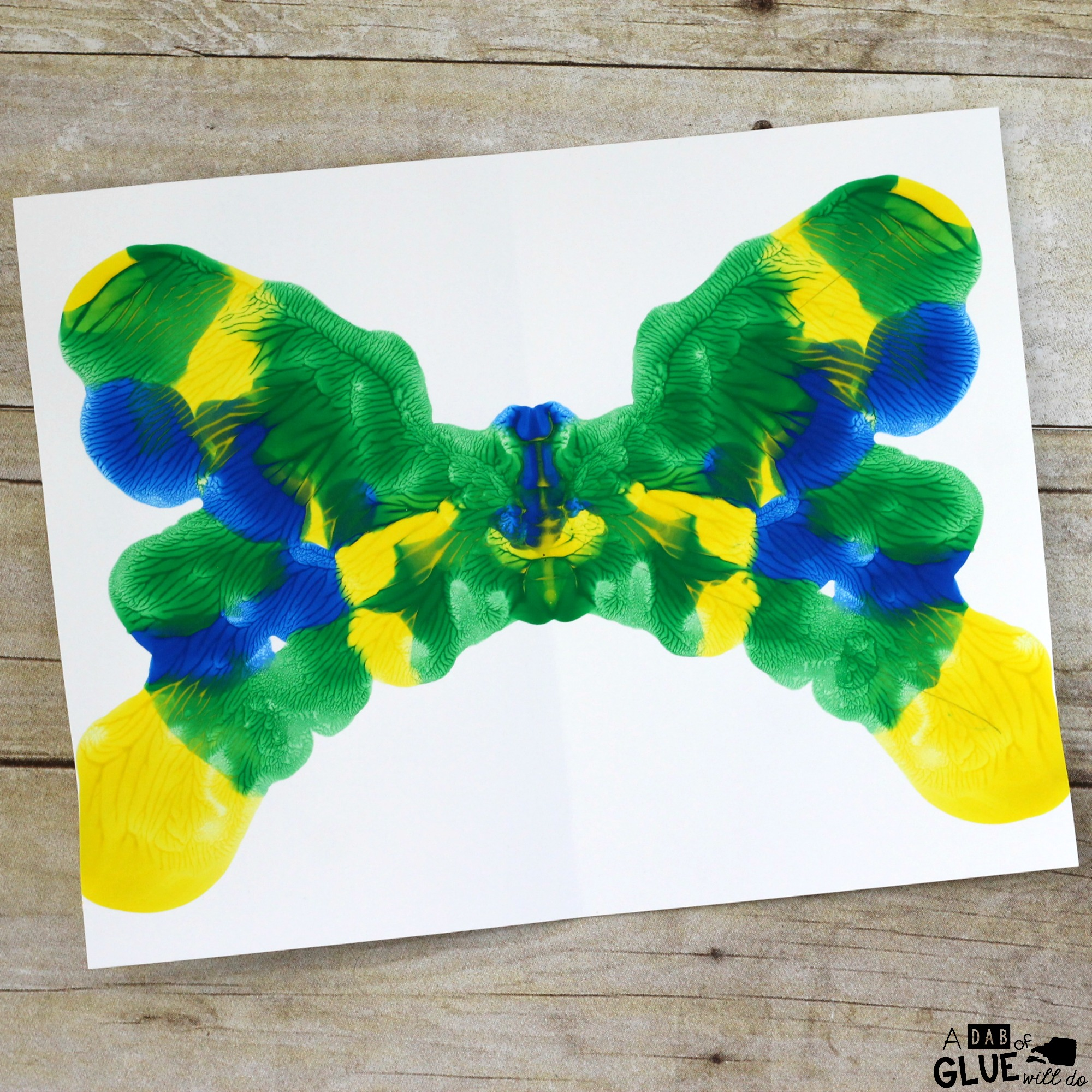 Line of Symmetry Butterfly Craft -