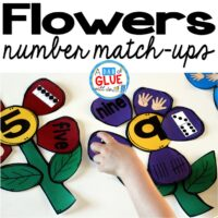 Make learning fun with this themed Flowers Number Match-Up. Your elementary age students will love this fun spring themed math center! Perfect for math stations or small review groups. Use in your Preschool, Kindergarten, and First Grade classrooms. Black and white options available to save your color ink.