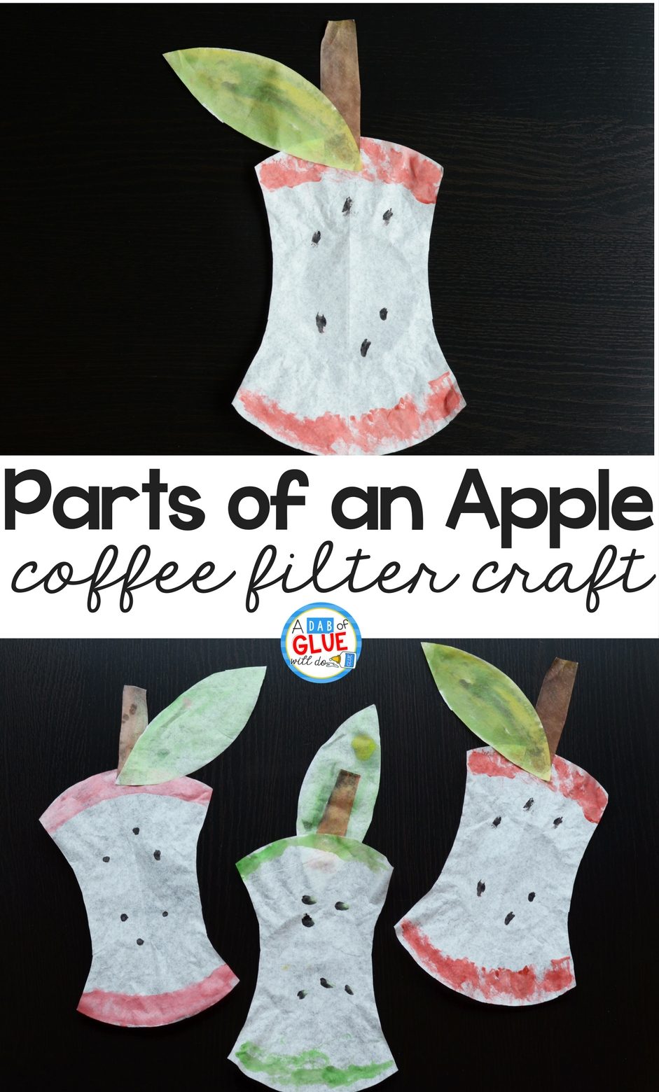 Today we are sharing a fun craft to help learn the parts of an apple! This is a simple coffee filter craft that uses watercolor paints to create an apple core, skin, leaf, stem, and seeds. This craft is a great one to do in the beginning of the year for preschool, kindergarten, or elementary students, or as a craft to do with apple themed units.