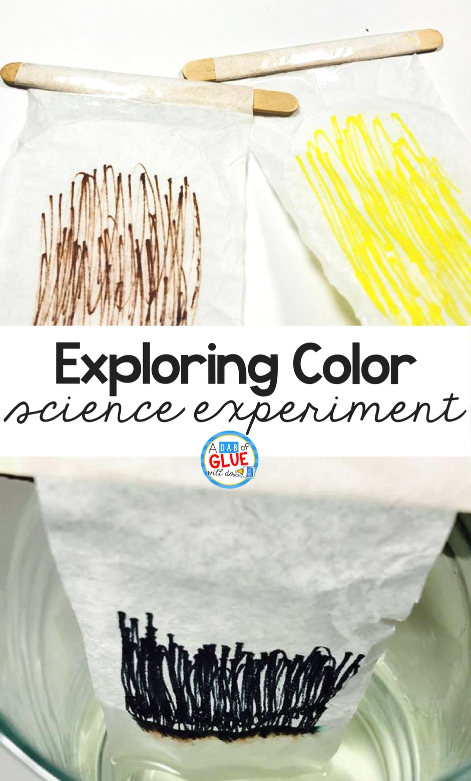 Dive into this fun color exploration experiment with your kindergarteners today! There are just a couple simple materials you need to help your students enjoy the changing of the colors in this simple science experiment.