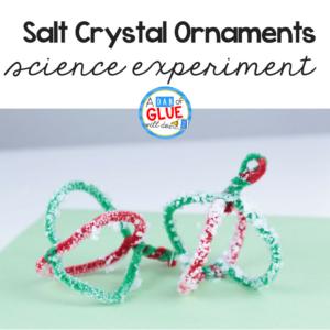 Salt Crystal Ornament Science Experiment