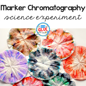 Simple Science: Kid Made Chromatography