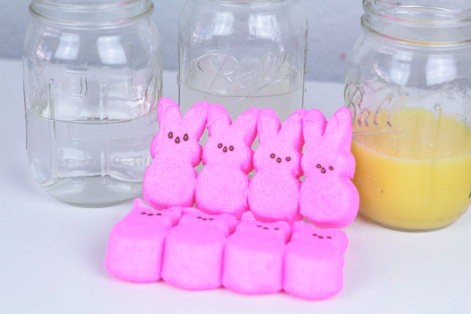 Getting the Peeps ready for the dissolving Peeps science experiment.