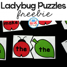 Ladybug Editable Sight Word Puzzles
