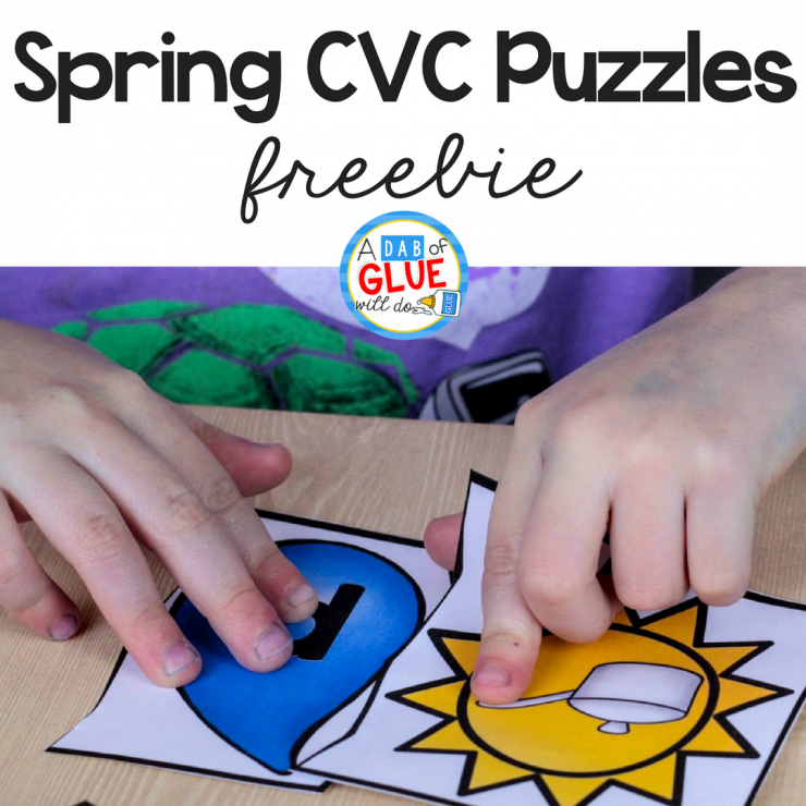 Spring CVC Puzzles