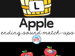 Your students are going to LOVE learning about ending sounds with this apple ending sound match up! Perfect for your early literacy center!