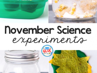 To connect the fall season with science I've created fourNovember Science Experimentsso our students canreview sciencein an enjoyable hands-on way!