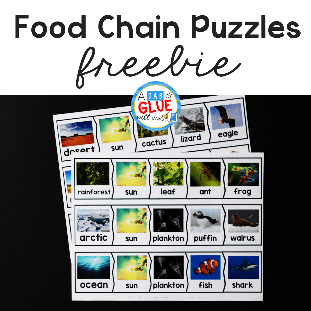 so our students can show what they know I've created these Food Chains Puzzles. This helps our preschool, kindergarten, and first-grade students learn and review food chains in a hands-on way.