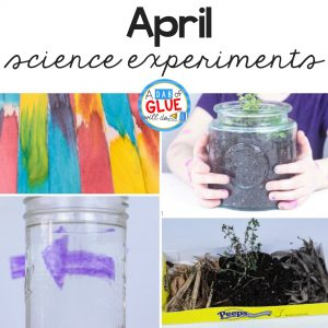 4 experiments to make science fun