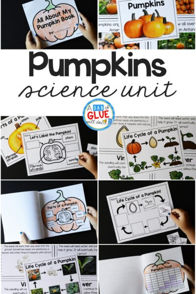 to bring our fascination with pumpkins and science together, I've created this Pumpkins Science Unit. It's an excellent hands-on science unit.
